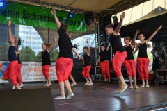 Bürgerfest Sachsendorf/Madlow 06.06.2015